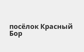 Справочная информация: Промсвязьбанк в посёлке Красный Бор — адреса отделений и банкоматов, телефоны и режим работы офисов